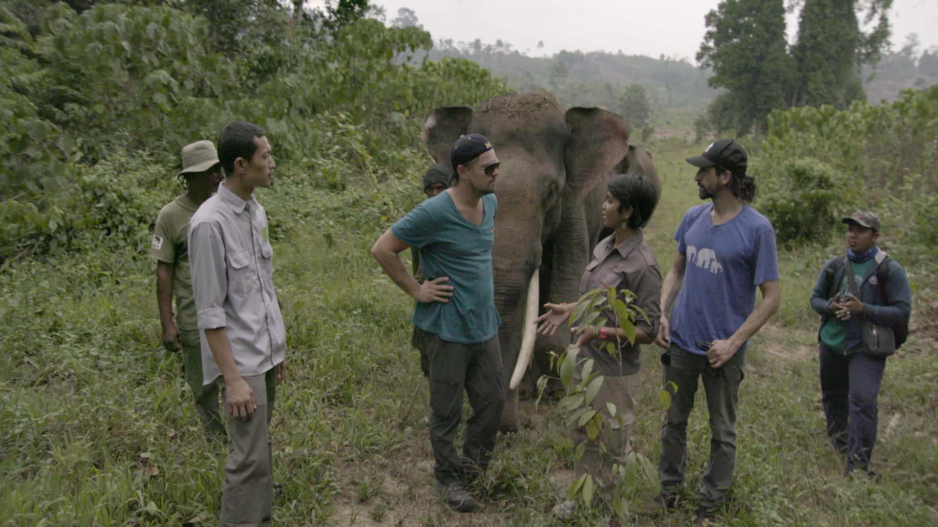 INDONESIA- Leonardo with Farwiza Farhan and Rudi Putra in the Leuser Ecosystem. For two years, Leonardo DiCaprio has criss-crossed the planet in his role as UN messenger of Peace on Climate Change. This film, executive produced by Brett Ratner and Martin Scorsese, follows that journey to find both the crisis points and the solutions to this existential threat to human species. © 2016 RatPac Documentary Films, LLC and Greenhour Corporation, Inc. All rights reserved.